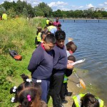 Planting and pond-dipping with London Wildlife Trust