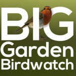 RSPB Big Garden Birdwatch 2018