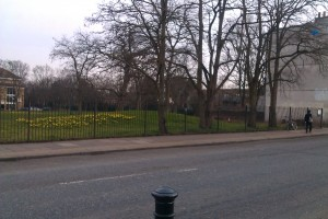 Park entrance from Commercial Way with new bulbs and bushes removed