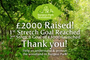 Inage of woodlands with text on funding achieved.